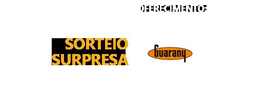 sorteio-guarany
