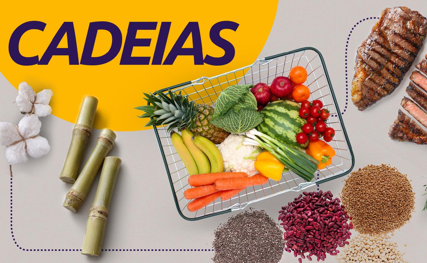 Principais desafios e oportunidades das cadeias produtivas do agronegócio serão debatidos no 4º CNMA