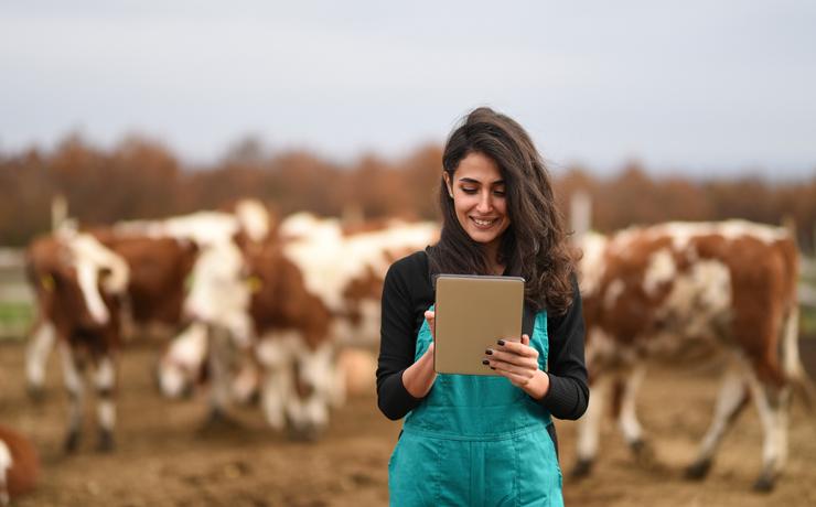 4 dicas essenciais para cuidar da sua gestão financeira rural
