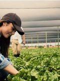 New Holland reforça compromisso com mulheres do agro no 5° Congresso Nacional de Mulheres do Agronegócio
