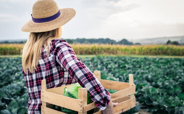 Participação feminina no agronegócio cresce com ajuda de coletivos e novos programas de sucessão familiar