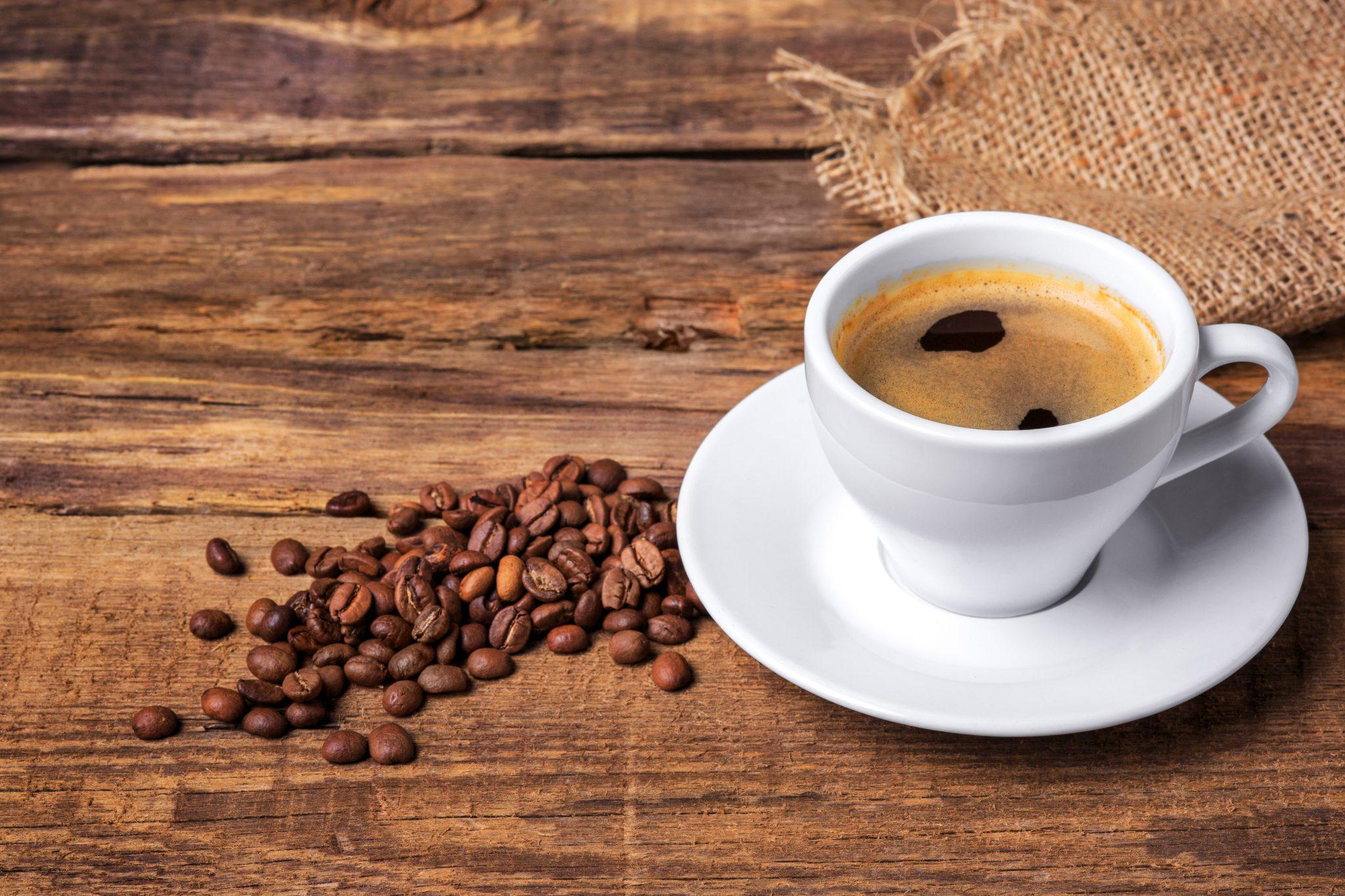 Muitas histórias, uma paixão em comum: o café.