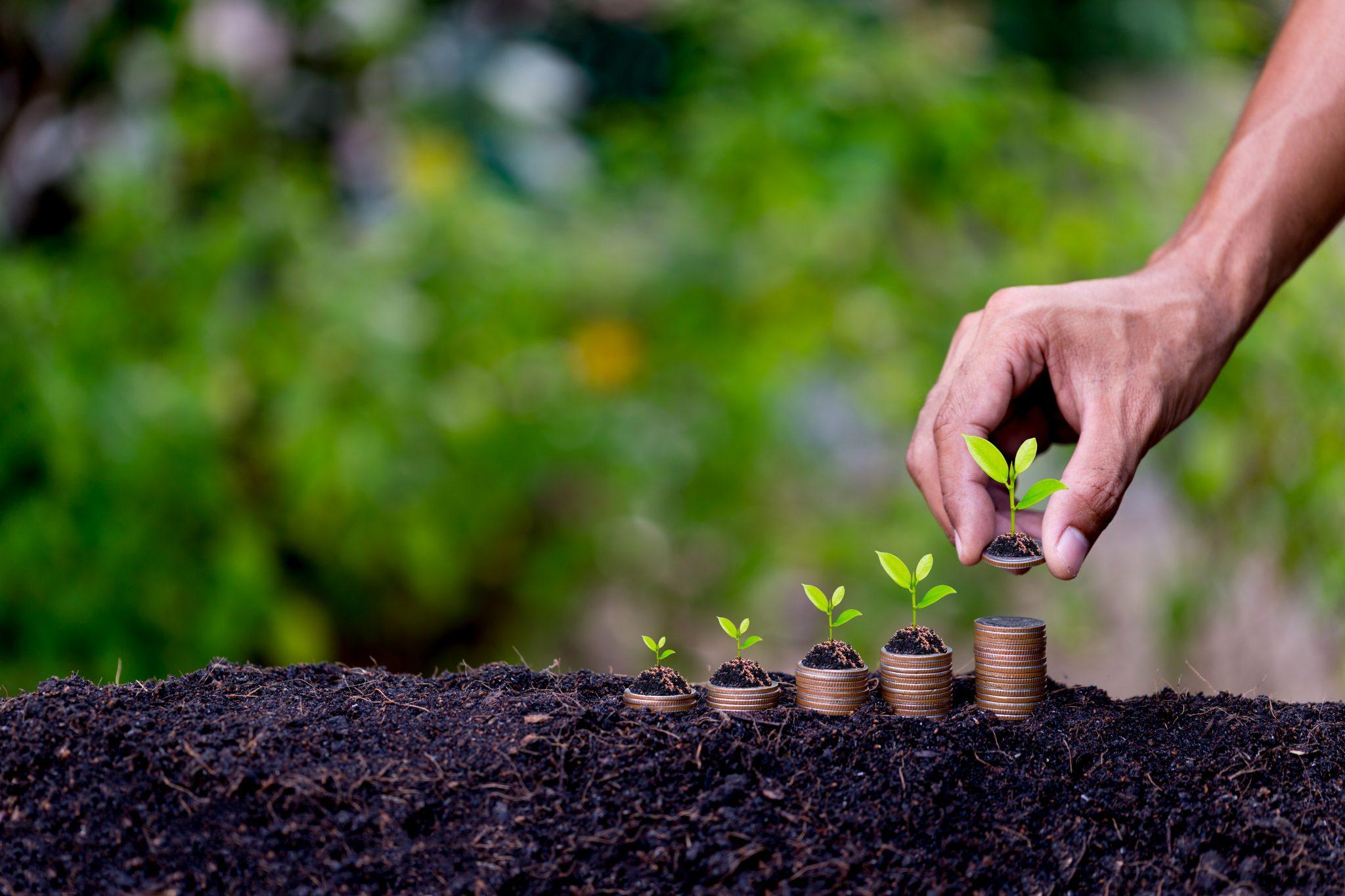 Práticas no campo agregam valor à produção do agronegócio e oferecem oportunidades de crescimento para o setor