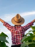 Bayer desenvolve estratégia voltada à inclusão de mulheres no agro